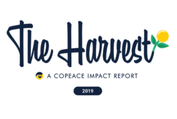The Harvest 2019